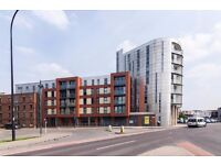 Above average in size, modern, well kept property to rent in Daisy Spring Works - Sheffield
