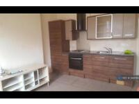 1 bedroom flat in Mapperley, Nottingham, NG3 (1 bed)