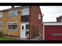 3 bedroom house in Newton Drive, Stockton On Tees, TS17 (3 bed)