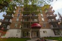 1 Bdrm available at 915 13th Avenue SW, Calgary