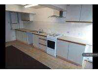 1 bedroom flat in North Wingfield Road, Chesterfield, S42 (1 bed)