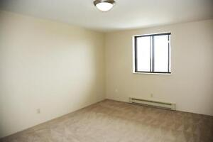 1 Bedroom Apartment for Rent in Kingston at John Counter Place Kingston Kingston Area image 2