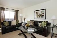 1 bedrooms Avail. Now! - Updated Large and Bright Suites
