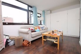 Large studio apartment with semi separate bedroom, lounge space and separate kitchen