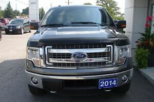 2014 Ford F-150 XLT Hard to find Long Box Peterborough Peterborough Area image 3