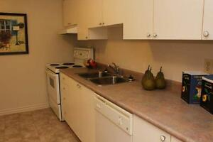 Ridout Place - The Kent Apartment for Rent London Ontario image 11