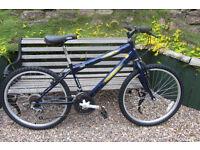 Bikes Freespirit Rustler