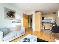 1 BED APARTMENT LOCATED WALKING DISTANCE TO SHOPS AND AMENITIES OF SOUTH QUAY, CANARY WHARF-TG