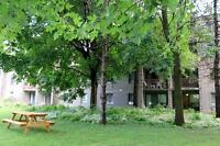 Cornwall 2 bedroom Apartment for Rent: Elevator, parking avail
