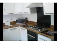 3 bedroom house in Monmouth Street, Sheffield, S3 (3 bed)