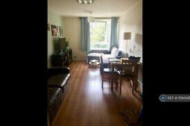 1 bedroom flat in Balham, London, SW12 (1 bed) (#1094346)