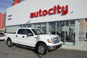 2014 Ford F-150 XL | Backup Camera | Perfect Work Truck! |