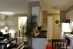 Caron & University: Central Windsor 1 Bedroom Apartment for Rent