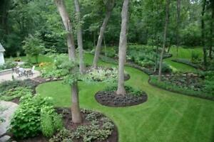 SOD $1.00 SQ/FT FREE ESTIMATES, REMOVAL AND INSTALL, NEW LAWN, NEW GRASS BOOK NOW!!