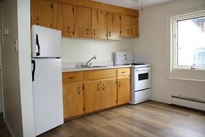 One Bedroom Apartment Available Downtown - Heat Included