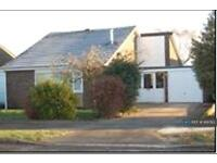 3 bedroom house in Highfields, Lincoln, LN2 (3 bed)
