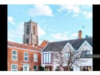 3 bedroom house in Damocles Court, Norwich, NR2 (3 bed) (#1214994)