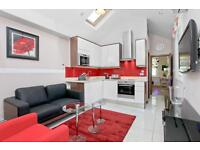 STUDENTS!!! MODERN and BRIGHT, CHEAP 1 BEDROOM APARTMENT 2 MINS FROM BAKER STREET STATION!!
