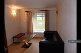 1 bedroom flat in Clyde House, Hamilton, ML3 (1 bed)