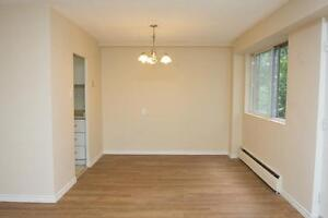 LARGE 2 Bedroom near the Victoria Hospital! Pet Friendly London Ontario image 7