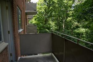 LARGE 2 Bedroom near the Victoria Hospital! Pet Friendly London Ontario image 12