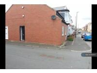 2 bedroom flat in Hendon Valley Road, Sunderland, SR2 (2 bed)