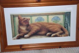 """BEAUTIFUL GINGER CAT PICTURE IN QUALITY SOLID PINE FRAME. EXCELLENT FOR CHRISTMAS PRESENT 36""""X 19"""""""