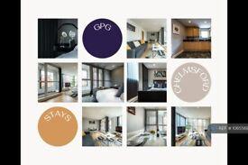 2 bedroom flat in Bellamy Court, Chelmsford, CM1 (2 bed) (#1065569)