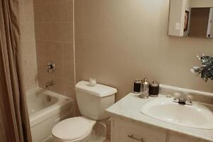 Friendly community in Kingston with 1 bedroom apartment for rent Kingston Kingston Area image 8