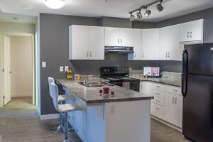 BRAND NEW1 bedroom apartment north east Calgary in Skyview!