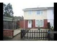4 bedroom house in Priscilla Close, Norwich, NR5 (4 bed)