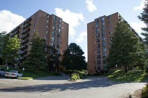 1 bedroom apartment   apartments & condos for sale or rent in