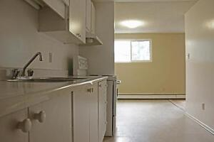 Elmira 2 Bedroom Apartment for Rent: Parking, laundry, pets OK