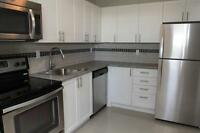 NEW 3 Bedroom with SS. Appliances & Balcony! (Eglinton Ave E)