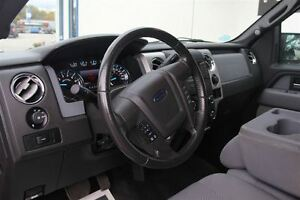 2013 Ford F-150 XLT Windsor Region Ontario image 10