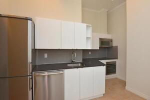 Newly Renovated 2 Bedroom in Roncesvalles