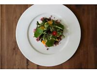 Chef Required for VANILLA BLACK vegetarian Restaurant Restaurant
