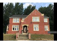 9 bedroom house in Rochdale Road, Manchester, M9 (9 bed)