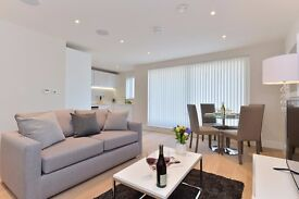 2 bed/1 bath apartment in London Bridge, fully furnished and WIFI included, 3 months min