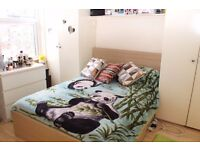 Double room for single female. Sharing bathroom with another female