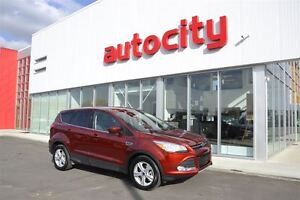 2015 Ford Escape SE | Power Options | Perfect Family SUV |