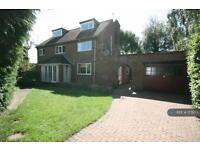 5 bedroom house in Whitcliffe Avenue, Ripon, HG4 (5 bed)
