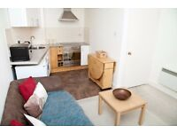 Short Term Let - One bedroom flat in an amazing central location in Tollcross (338)