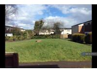 3 bedroom house in Smallwood, Sutton Hill, Telford, TF7 (3 bed)