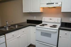 Spacious Apts for Western Students! Parking & Internet Included! London Ontario image 11