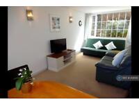 1 bedroom flat in Meadfoot Road, Torquay, TQ1 (1 bed)