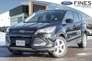 2016 Ford Escape ESCAPE SE