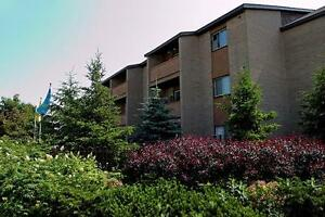 Bayridge Court - 1 Bedroom Apartment for Rent Kingston Kingston Area image 4