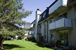 1 Bedroom Apartment for Rent in Fergus: Walk to downtown!