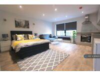 Studio flat in Alma Street, Luton, LU1 (#689629)